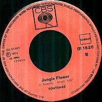 Fontenas Whipping Post Jungle Flower